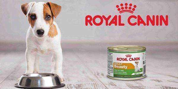 Royal Canin (Royal Canin)
