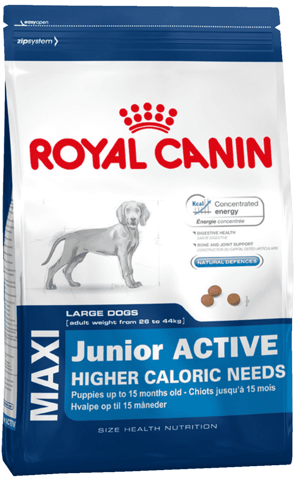 Royal Canin Junior activ